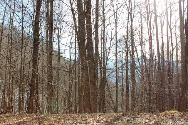 Lot #18 Covecrest Drive, Maggie Valley, NC 28751 (#3573517) :: Charlotte Home Experts