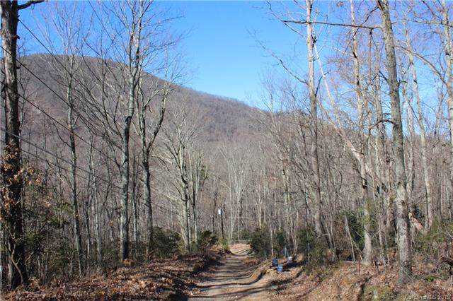 0000 Pinnacle Mountain Road, Leicester, NC 28748 (#3573646) :: The Ramsey Group