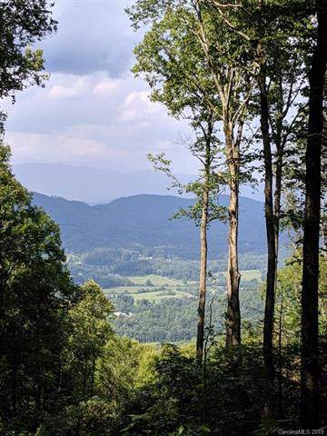 TBD Laurel Ledge Way Lot 20, Fletcher, NC 28760 (#3573649) :: Exit Realty Vistas