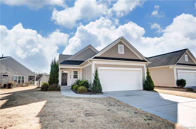 20250 Dovekie Lane, Indian Land, SC 29707 (#3574016) :: LePage Johnson Realty Group, LLC