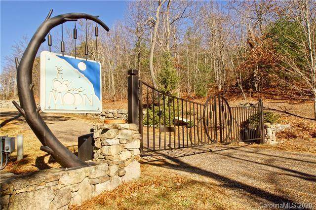 580 Sahalee Trail, Hendersonville, NC 28739 (#3574449) :: Stephen Cooley Real Estate Group
