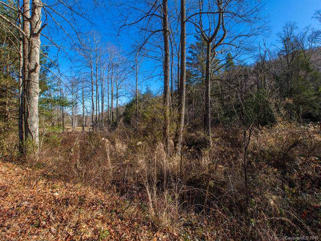 000 Bobs Creek Road, Zirconia, NC 28790 (MLS #3574452) :: RE/MAX Journey