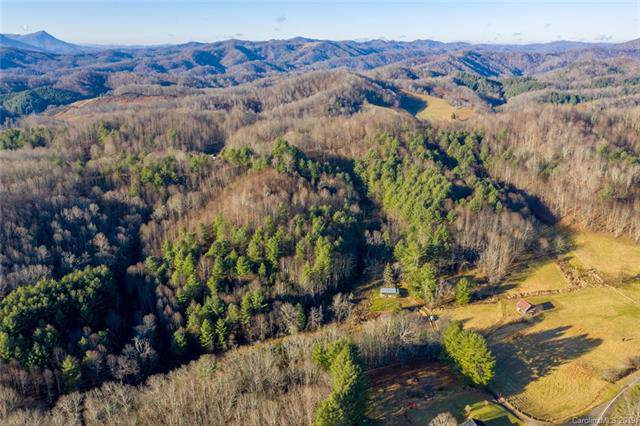 1168 Big Piney Creek Road, Lansing, NC 28643 (#3574580) :: Caulder Realty and Land Co.