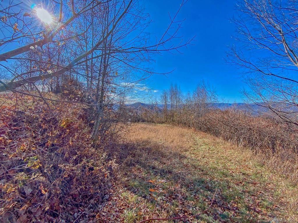 Lot 20 Hyacinth Drive - Photo 1