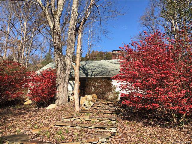 1688 Nc 209 Highway, Hot Springs, NC 28743 (#3574866) :: The Ramsey Group