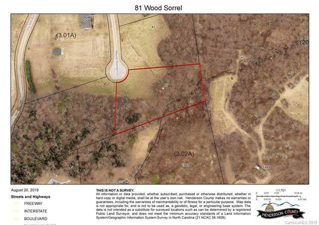81 Wood Sorrell Lane, Hendersonville, NC 28792 (#3575890) :: Keller Williams Professionals