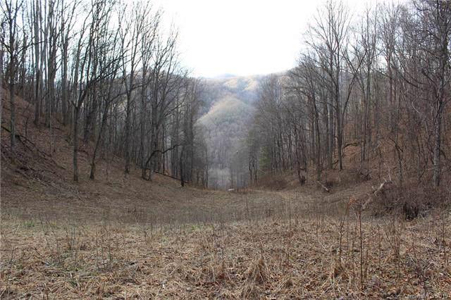 TBD Garretts Gap Lane, Marshall, NC 28753 (#3575998) :: BluAxis Realty