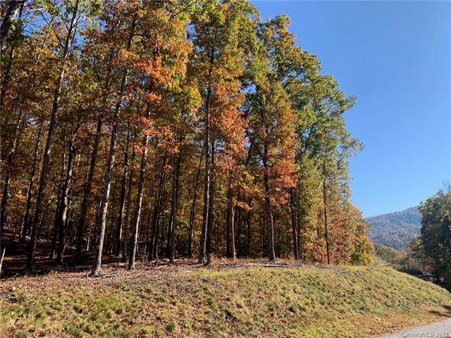 0 French Broad Parkway #56, Marshall, NC 28753 (#3576113) :: Caulder Realty and Land Co.