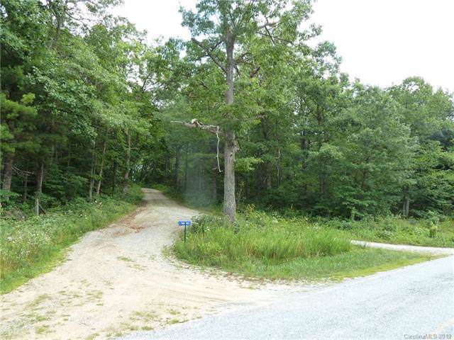 1 N Pointe Drive #1, Zirconia, NC 28790 (#3576475) :: LePage Johnson Realty Group, LLC