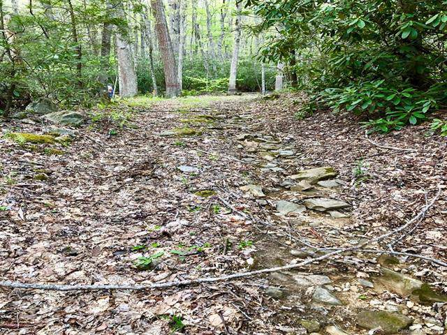 00 Poplar Creek Road, Green Mountain, NC 28740 (#3576763) :: Carlyle Properties