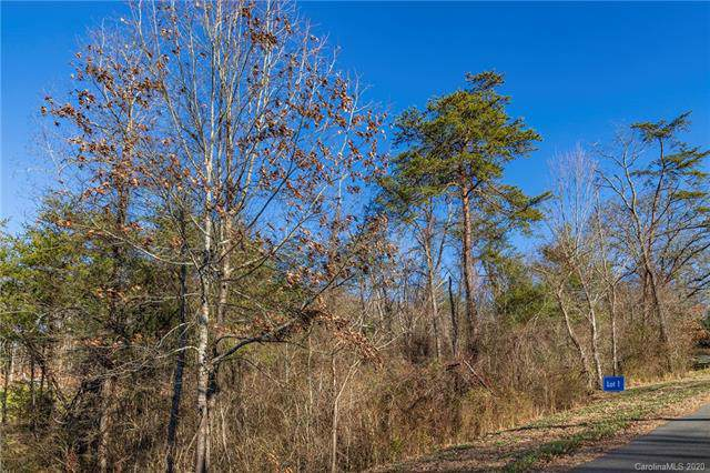 102 Saddle Ridge Drive #1, Alexander, NC 28701 (#3577776) :: LePage Johnson Realty Group, LLC