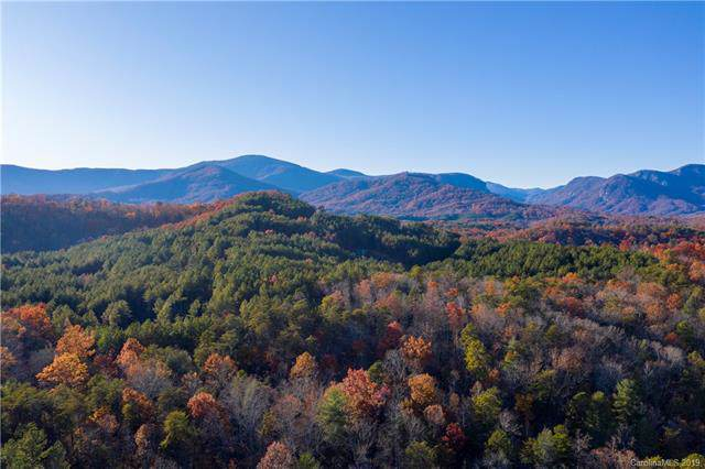 0000 Grassy Knob Road, Rutherfordton, NC 28139 (#3578207) :: Carlyle Properties