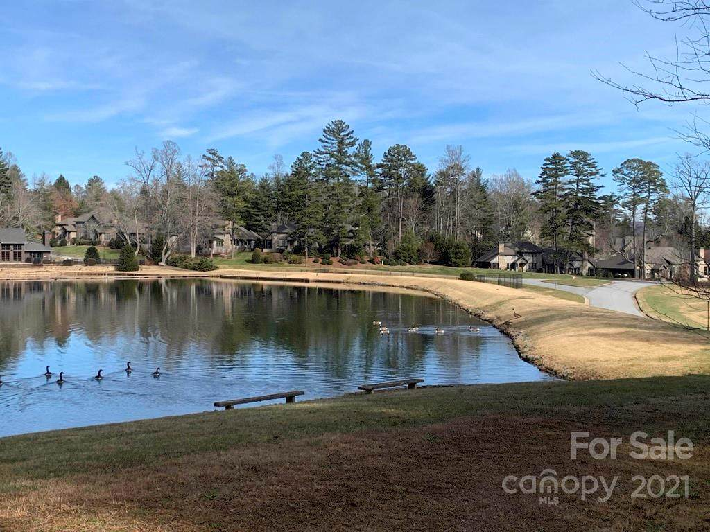 A1 Allison Creek Trail, Brevard, NC 28712 (#3578738) :: Rowena Patton's All-Star Powerhouse