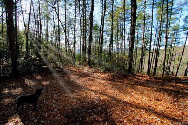 TBD Bear Pen Hollow Road #5, Rosman, NC 28712 (#3578828) :: Love Real Estate NC/SC
