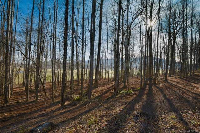 650 Walnut Valley Parkway #023, Arden, NC 28704 (#3579584) :: Rinehart Realty
