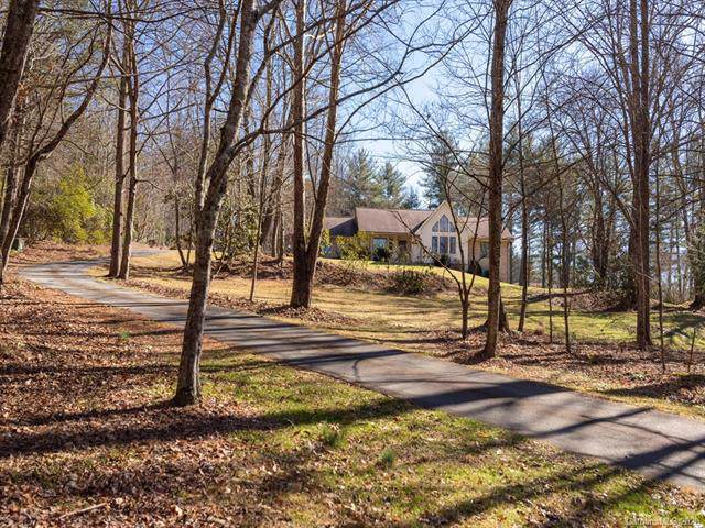 248 E Chasis Court, Mills River, NC 28759 (#3579878) :: Charlotte Home Experts