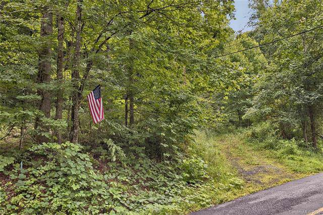 997 Hoot Owl Road, Spruce Pine, NC 28777 (#3579917) :: Stephen Cooley Real Estate Group