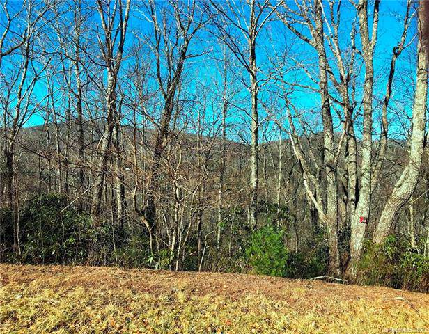 Lot# 122 Firethorn Trail, Blowing Rock, NC 28605 (#3580263) :: Stephen Cooley Real Estate Group