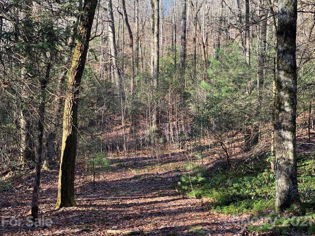 Lot 14 Liz Reece Road #14, Rosman, NC 28772 (#3580817) :: Johnson Property Group - Keller Williams