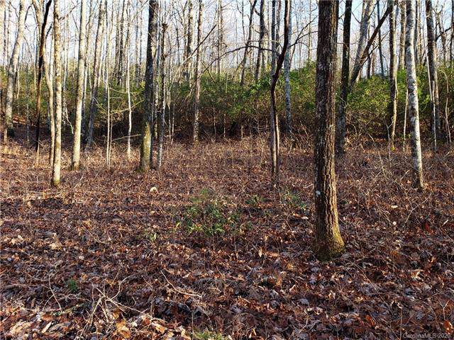 Lot 47 Big Branch Road #47, Brevard, NC 28712 (#3581034) :: Rinehart Realty