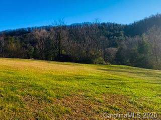 0000 Pops Place, Weaverville, NC 28787 (#3581075) :: Zanthia Hastings Team