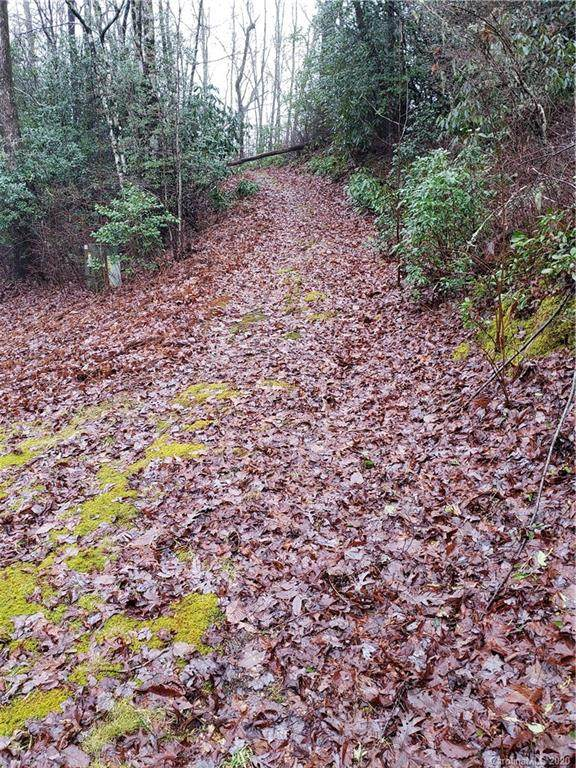 Lot 98 Laurel Thicket Drive #98, Brevard, NC 28712 (#3581516) :: Carver Pressley, REALTORS®