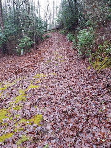 Lot 98 Laurel Thicket Drive #98, Brevard, NC 28712 (#3581516) :: Rinehart Realty