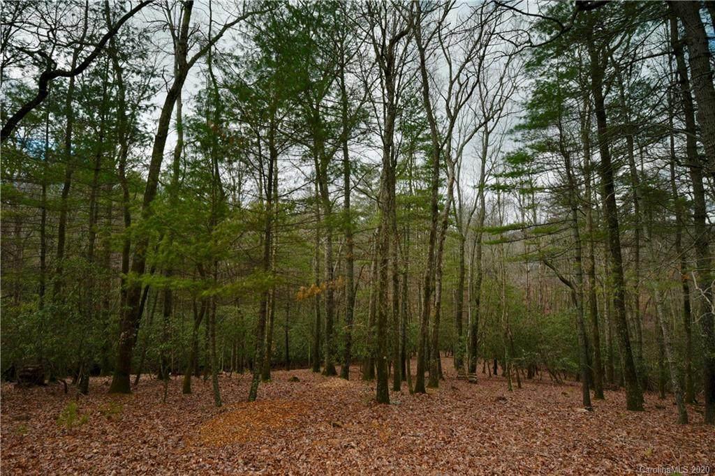 41 Dividing Ridge Trail - Photo 1