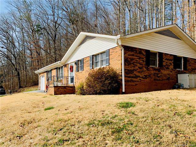 51 Turkey Creek Road, Leicester, NC 28748 (#3582227) :: Exit Realty Vistas