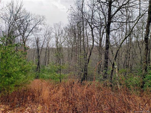 Lot 45 Big Branch Road #45, Brevard, NC 28712 (#3582270) :: Besecker Homes Team