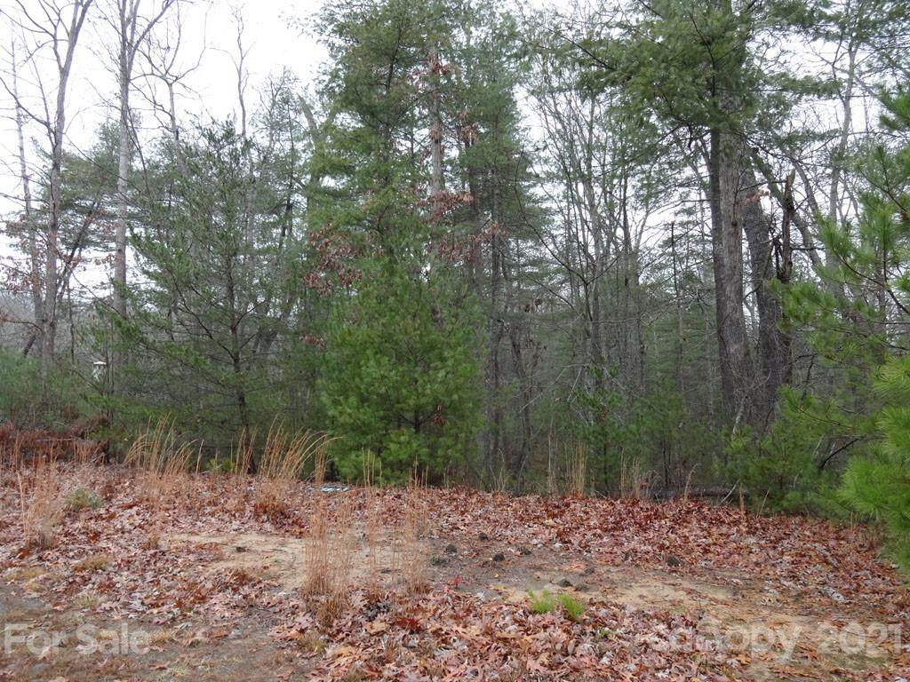 LOT 24 Cedar Hill Drive, Asheville, NC 28803 (#3582312) :: Stephen Cooley Real Estate Group