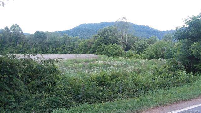 99999 Old Highway 221 Highway S, Glenwood, NC 28167 (#3582555) :: LePage Johnson Realty Group, LLC