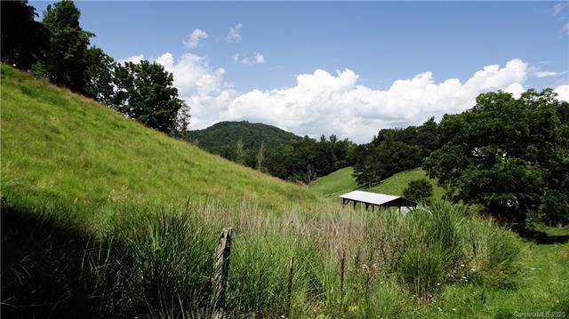 258 Angel Road, Mars Hill, NC 28754 (#3583222) :: Carlyle Properties