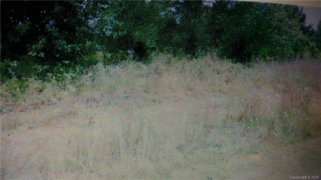 421 Ridgepath Road, Wadesboro, NC 28170 (#3583506) :: Carlyle Properties