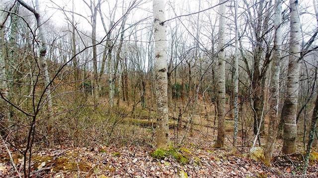 9 Split Pine Cove #9, Clyde, NC 28721 (#3583743) :: LePage Johnson Realty Group, LLC
