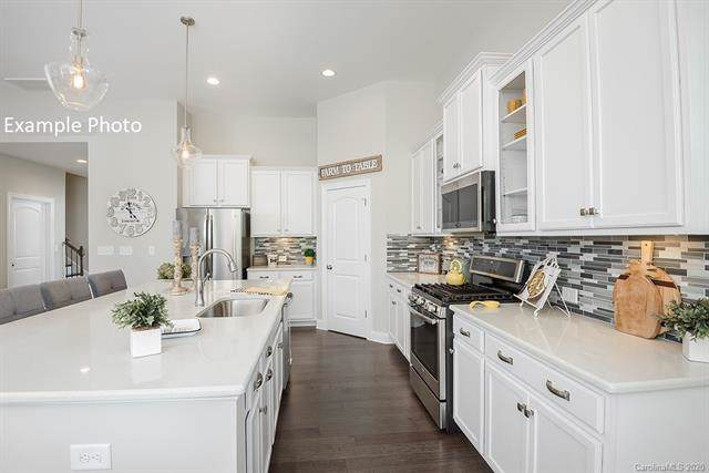 1077 Waterlily Drive, Indian Land, SC 29707 (#3584089) :: Stephen Cooley Real Estate Group