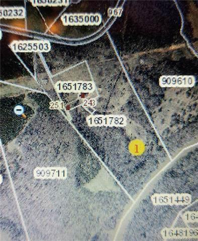 0 Loyola Drive, Mooresboro, NC 28114 (#3584105) :: Zanthia Hastings Team