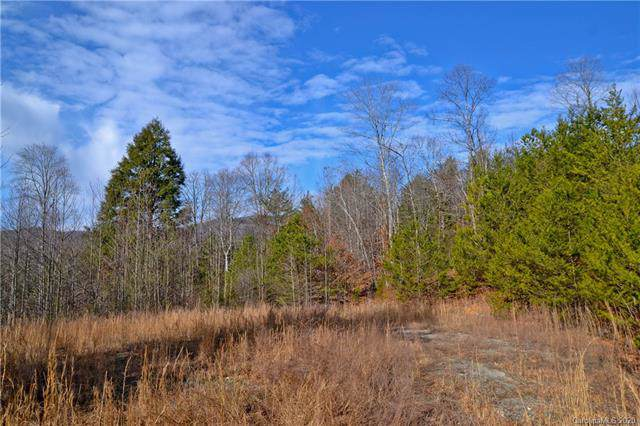 143 Buck Ridge Drive, Marion, NC 28752 (#3584297) :: Caulder Realty and Land Co.