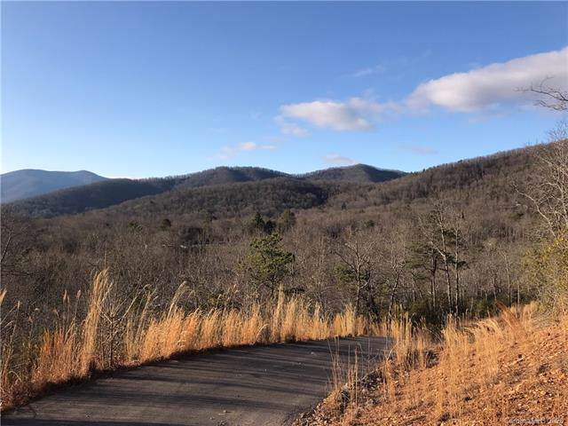 99999 Mccoy Cove Road, Black Mountain, NC 28711 (#3584819) :: Premier Realty NC