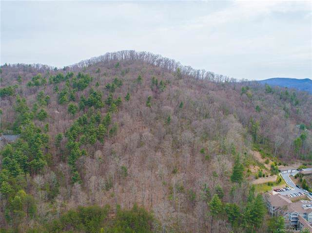 99999 Centre Park Drive, Asheville, NC 28805 (#3584888) :: The Ramsey Group