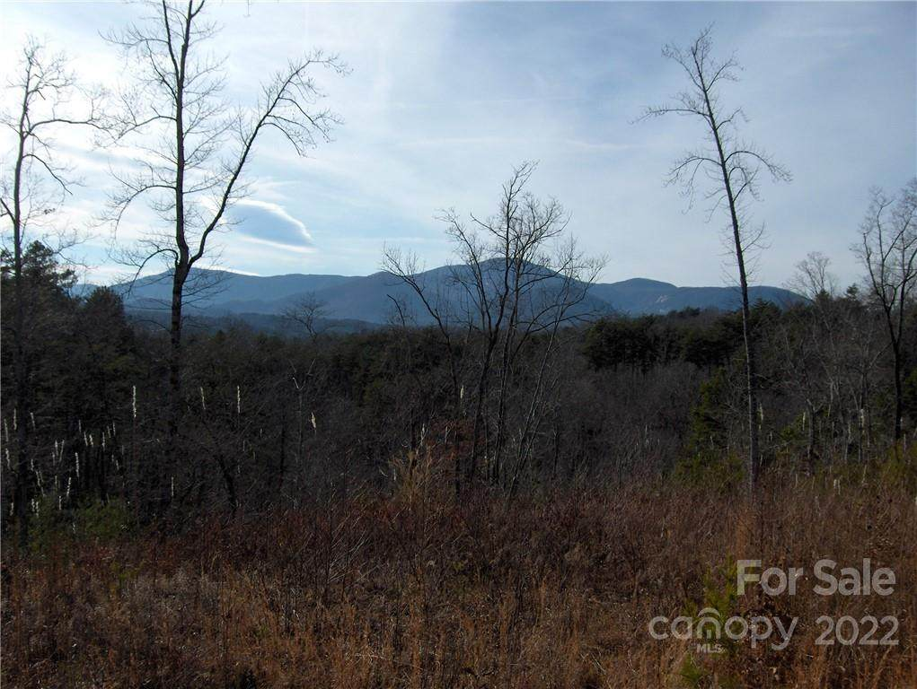 0 Deer Jump Trail #350, Lake Lure, NC 28746 (#3585085) :: Roby Realty