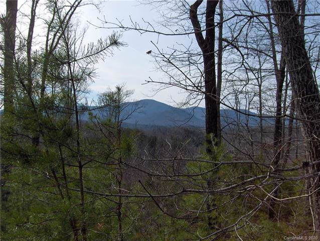 0 Willow Top Lane #333, Lake Lure, NC 28746 (#3585158) :: Caulder Realty and Land Co.