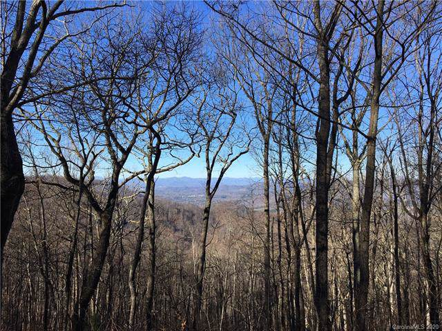 385 High Hickory Trail Trail #50, Swannanoa, NC 28778 (#3585163) :: Carlyle Properties