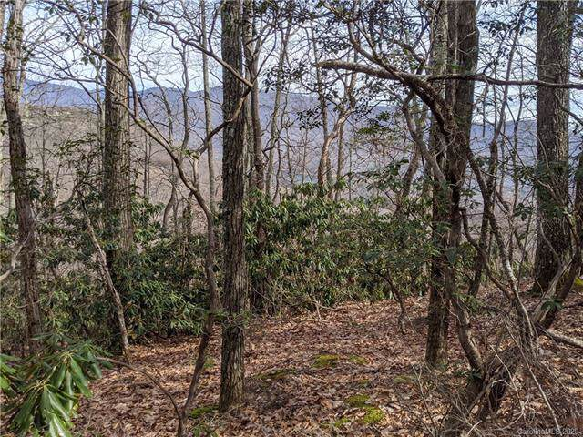25 Lake Wood Avenue #408, Black Mountain, NC 28711 (#3585266) :: LePage Johnson Realty Group, LLC