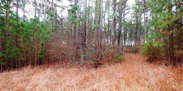 Lot 105 Greens Road #105, Granite Falls, NC 28630 (#3585283) :: The Ramsey Group