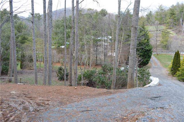 99999 and 47 Webb Cove Road, Asheville, NC 28804 (#3585449) :: Cloninger Properties