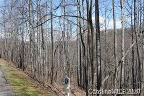 140 Atlantic Falls Trail #123, Black Mountain, NC 28711 (#3585992) :: Keller Williams South Park