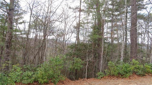 415 Jonathan Creek Drive, Etowah, NC 29729 (#3586031) :: Besecker Homes Team