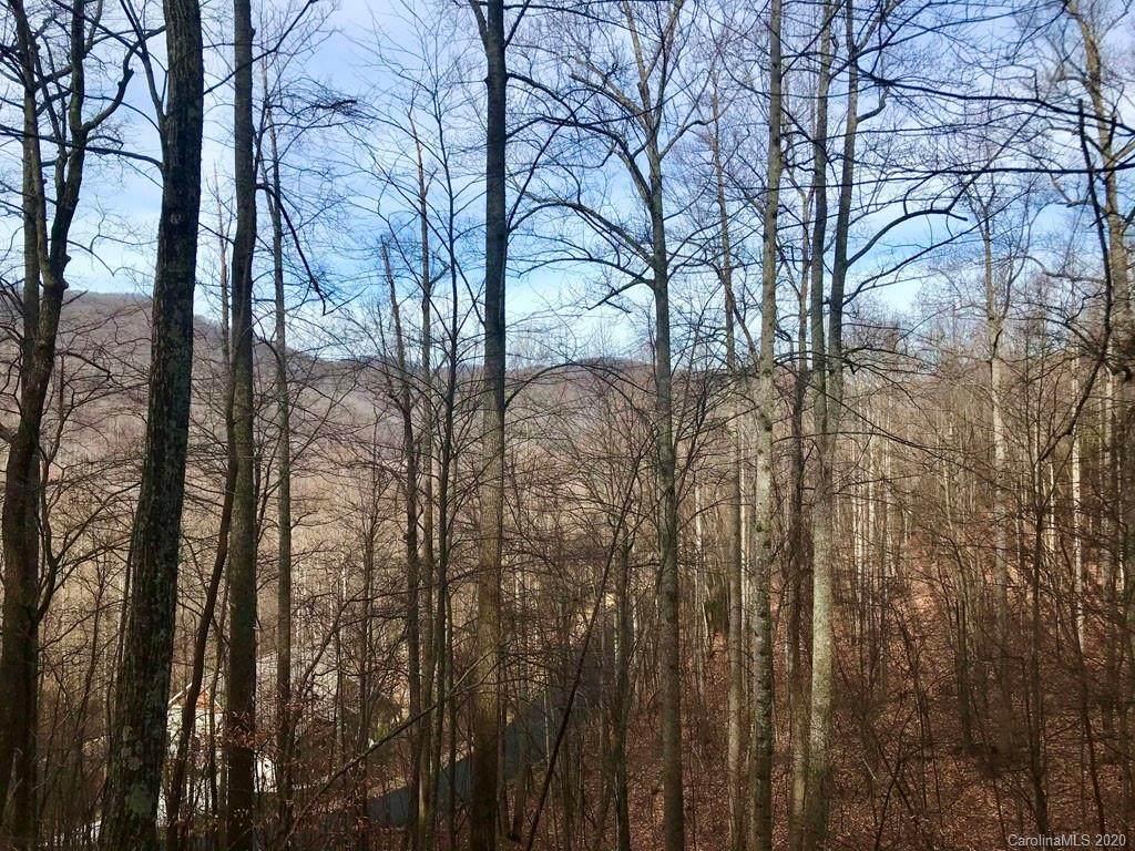547 Blue Mist Way - Photo 1