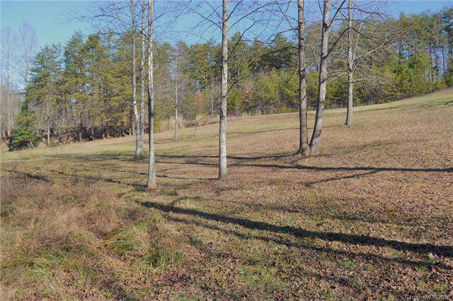 3736 E Burke Boulevard, Connelly Springs, NC 28612 (#3586564) :: Carlyle Properties
